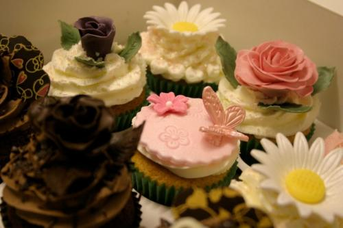 cupcakes-224
